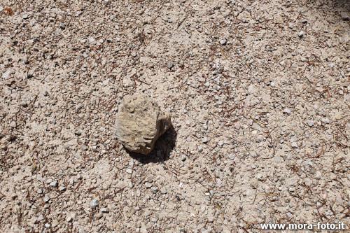 Gravel with stone